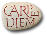 Gallery Carpe Diem